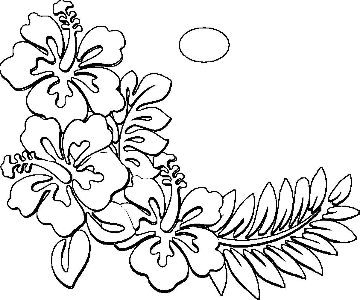 1203x1001 Hawaiian Flower Drawing