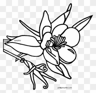 320x310 State Flower Of Mississippi