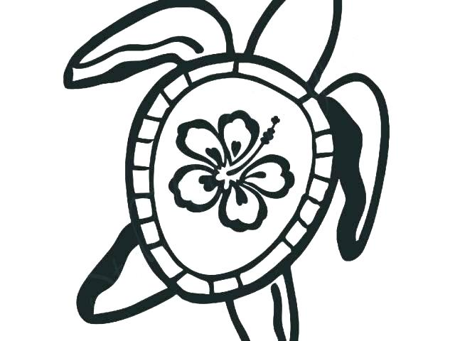 640x480 Hawaiian Flowers Coloring Pages
