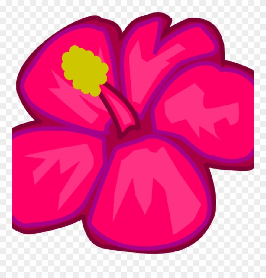 880x920 hawaiian flower clipart hawaiian flower clip art clipart