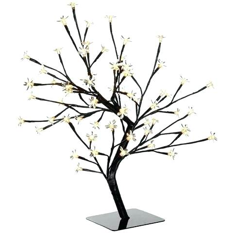 480x480 blossom tree drawing blossom tree blossom tree meaning blossom