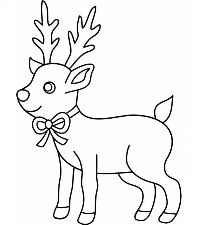 687x782 Reindeer Drawing Reference For Free Download
