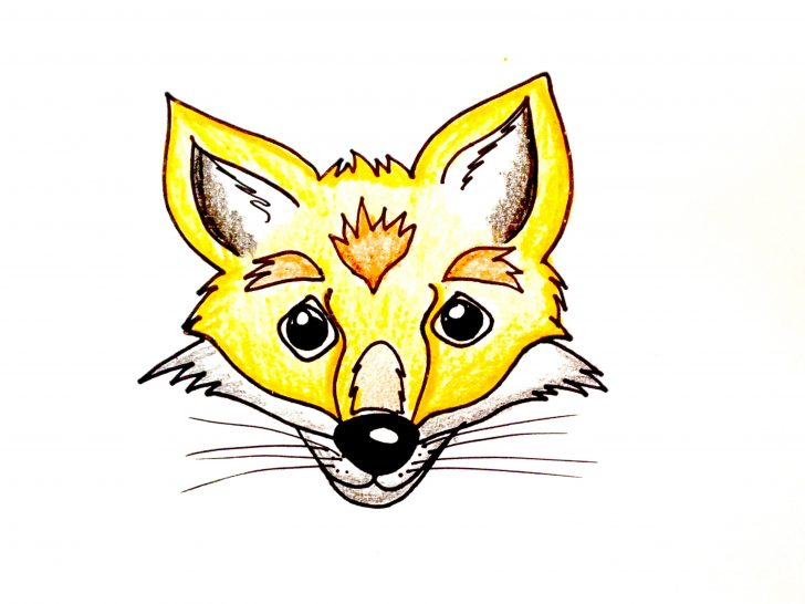 728x546 Fox Drawing Reference Simple Head Easy Of A Red I Fertility