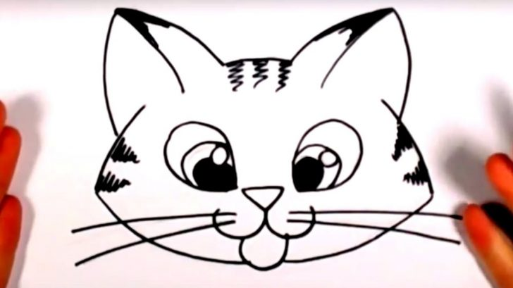 728x409 Cat Face Drawing Reference Stage Wallpaper