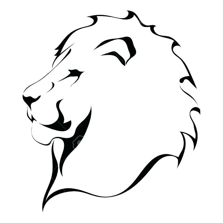 736x736 Lion Drawing Outline Image Titled Outline Lion Head Drawing