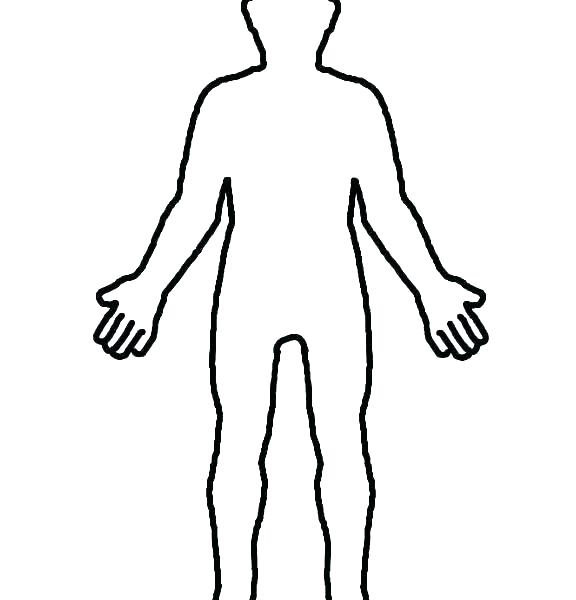 576x600 Outline Human Drawing Template Head Body Boy Of Free