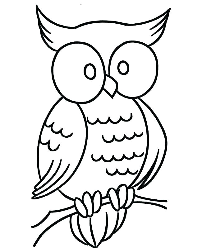 650x796 Owl Outline Drawing Owl Head Silhouette Owl Outline Drawing