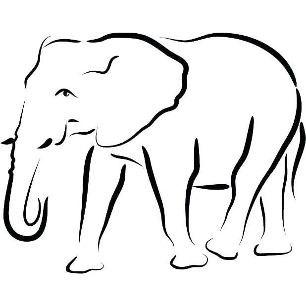 618x618 Outline Of An Elephant
