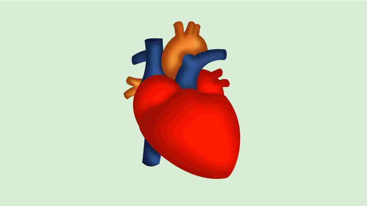 1517x853 simple human heart drawing simple human heart diagram drawing