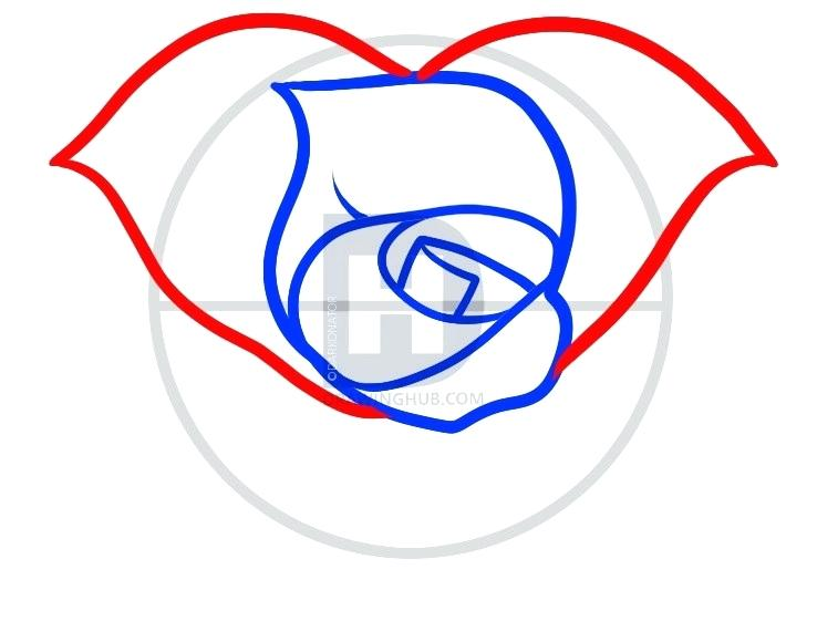 738x580 hearts with roses drawings drawings of hearts with banners hearts