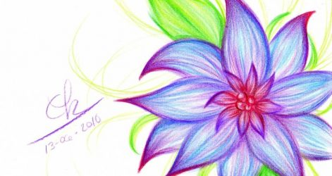 Heather Flower Drawing Free Download On Clipartmag