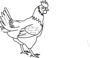 298x192 Hen Drawing, Picture