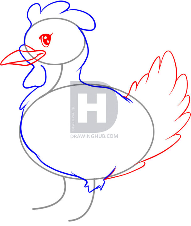 609x720 How To Draw A Hen, Step