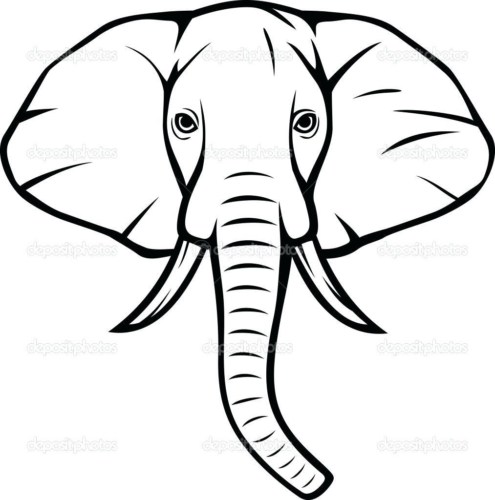 1013x1024 Elephant Drawing Elephant Face Drawing Simple Grandmasti Club