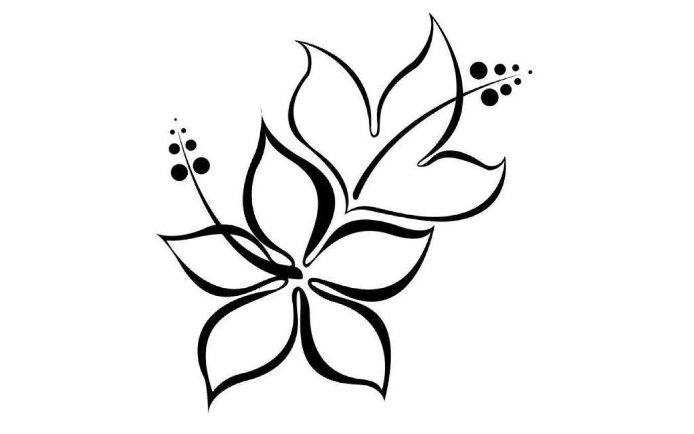 1368x855 Hibiscus Flower Drawing Simple