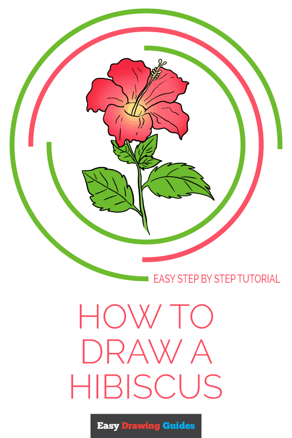 600x900 How To Draw A Hibiscus
