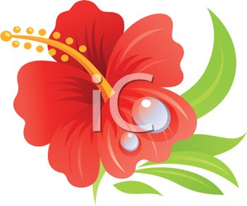 350x292 Royalty Free Clipart Image Realistic Hibiscus Flower Drawing