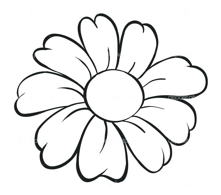 736x648 Simple Hibiscus Drawing Drawing Simple Hibiscus Flower Drawing
