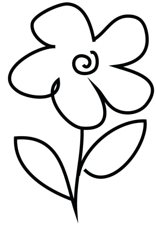 530x763 Flower Drawing Clipart Best Flower Drawings Ideas Rose Flower
