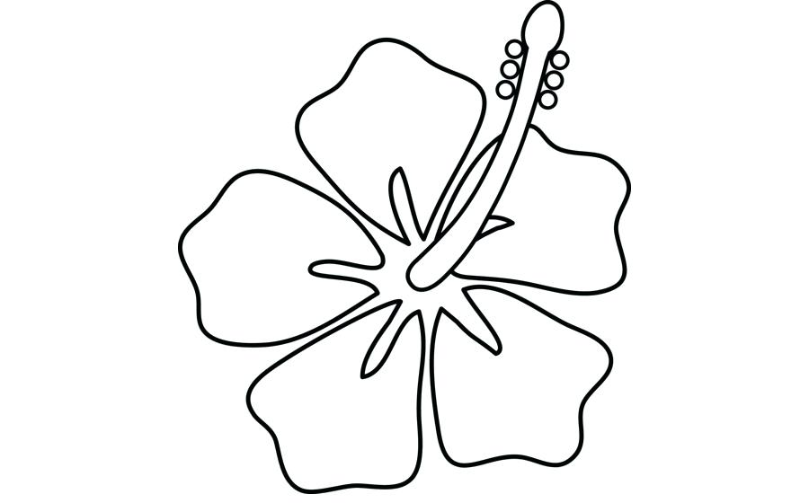 900x560 Hibiscus Flower Outline Outline Hibiscus Flowers Tattoo Design