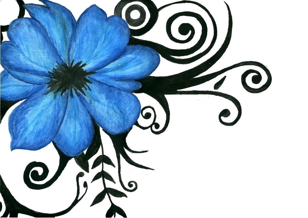 1024x724 How To Draw A Hawaiian Flower Step