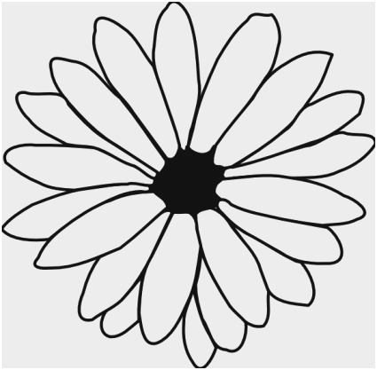 425x417 Flower Outline Coloring