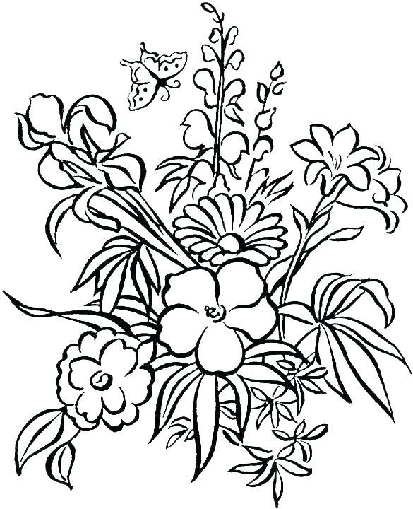 585x720 Hibiscus Flower Coloring