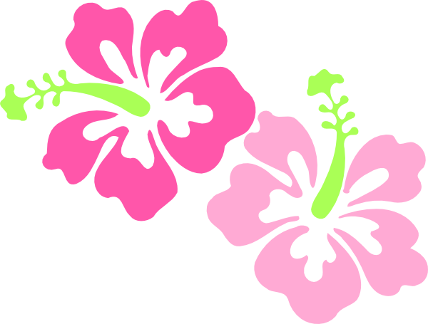 600x455 Dead Drawing Hibiscus Huge Freebie! Download For Powerpoint