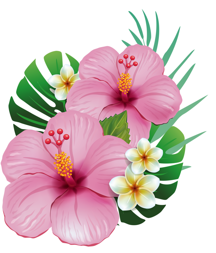 875x1024 Tropical Flower Drawing Pictures And Cliparts, Download Free