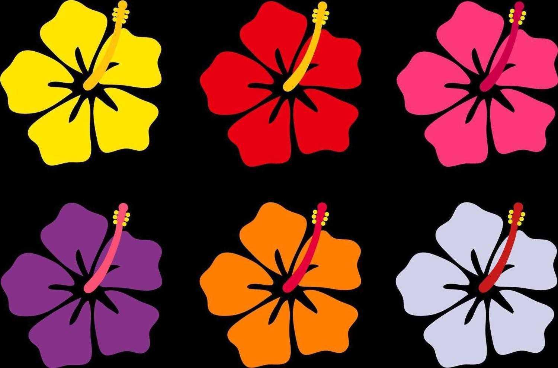 1500x989 How To Draw A Hawaiian Flower Draw Alima Us