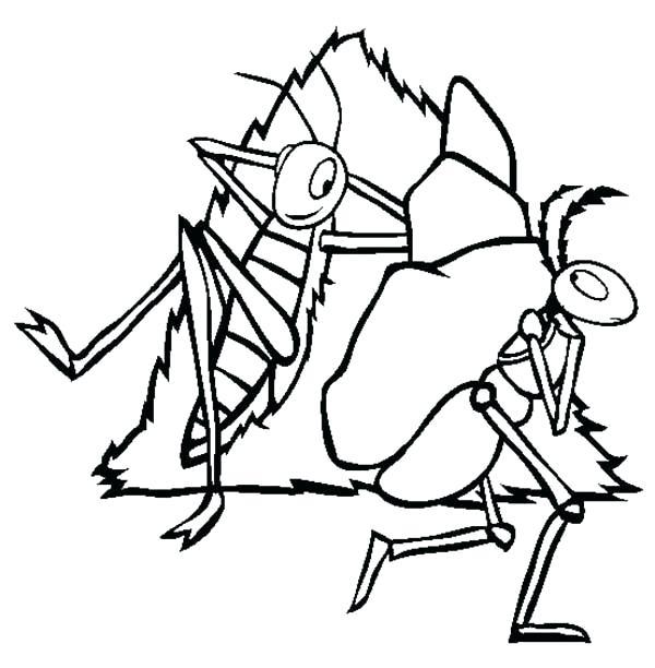 600x612 Grasshopper Drawings Grasshopper Funny Grasshopper Drawings