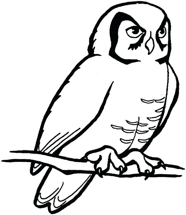 650x753 Outline Of Owls Drawings Collection Of Outline Of Owl Drawing