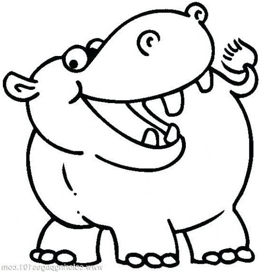 Hippo Drawing For Kids Free Download Best Hippo Drawing