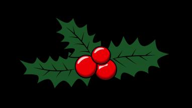 Holly Leaf Drawing