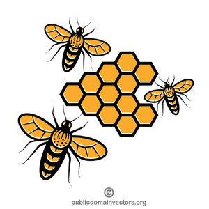 Honey Bee Drawing Clip Art