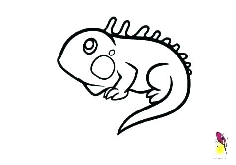 Horned Lizard Drawing | Free download on ClipArtMag