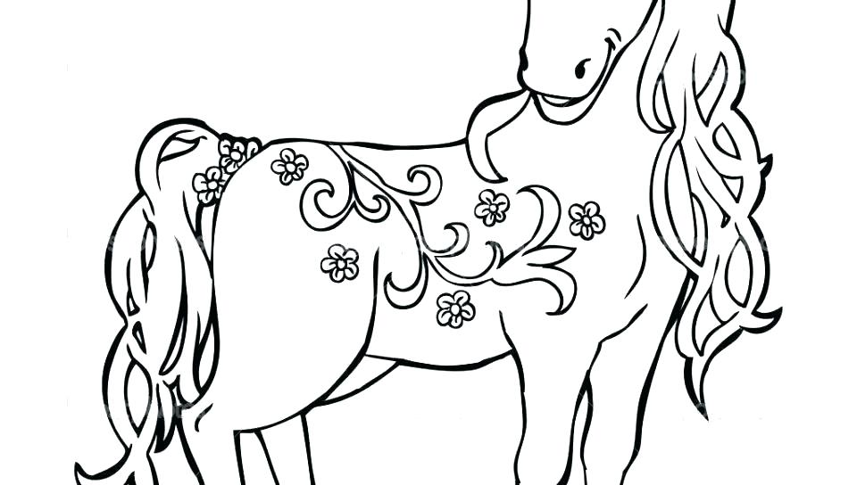 Horse Drawing Book   Free download best Horse Drawing Book on ...