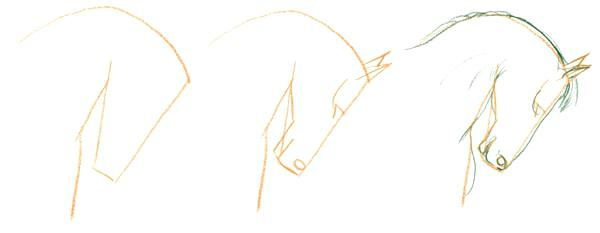 Horse Drawing Easy Step By Step | Free download best Horse Drawing