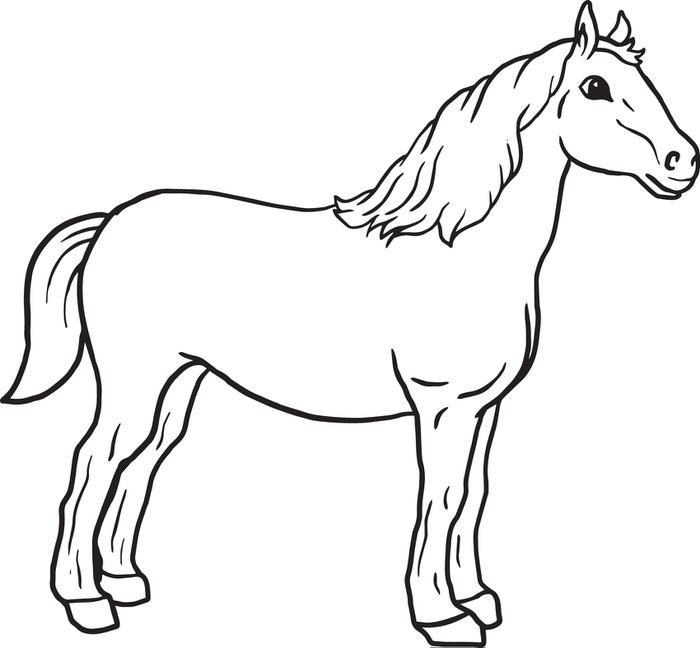 Horse Drawing For Kids
