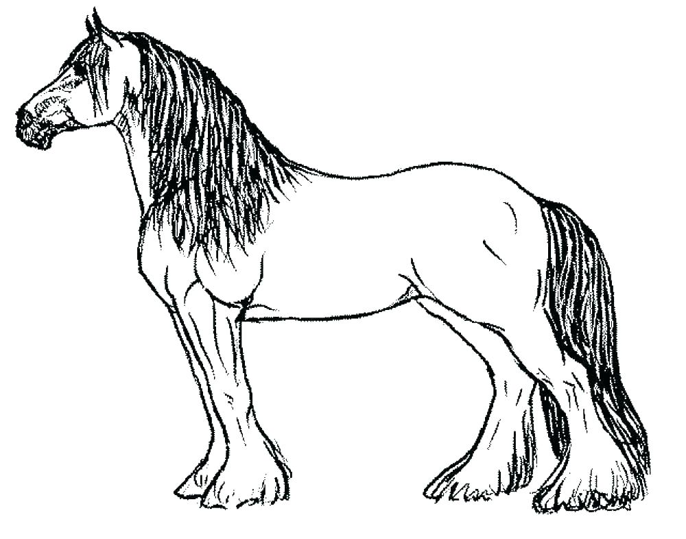 1000x786 free horse coloring pages beautiful mustang horse coloring