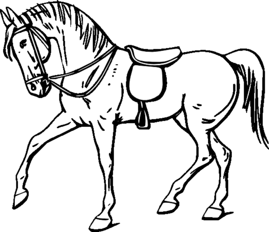 900x774 Horse, Drawing, Child, Transparent Png Image Clipart Free Download