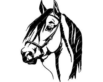 340x270 Horse Head Drawing Etsy