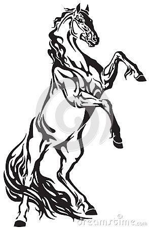 294x450 Black And White Horse Drawings Horse Tribal Tattoo Stallion