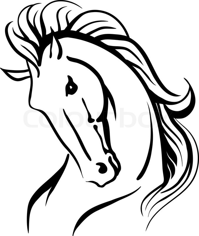 677x800 Stylised Drawing Of A Wild Horse Stock Vector Colourbox