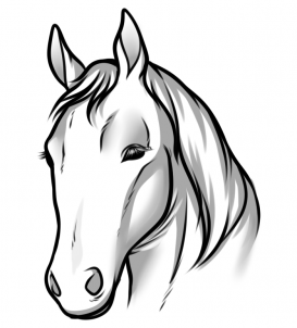 273x302 Draw Horse Heads And Faces, Step