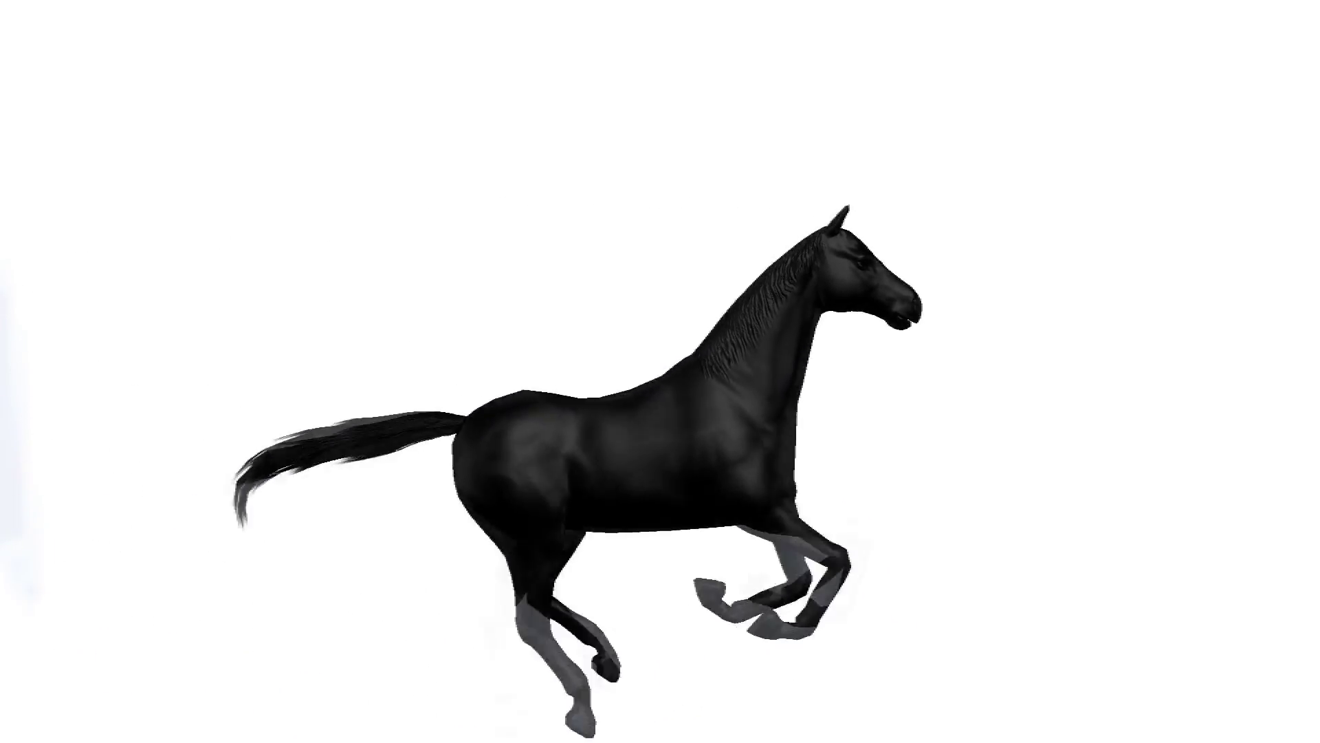 1920x1080 black horse galloping across a white background motion background