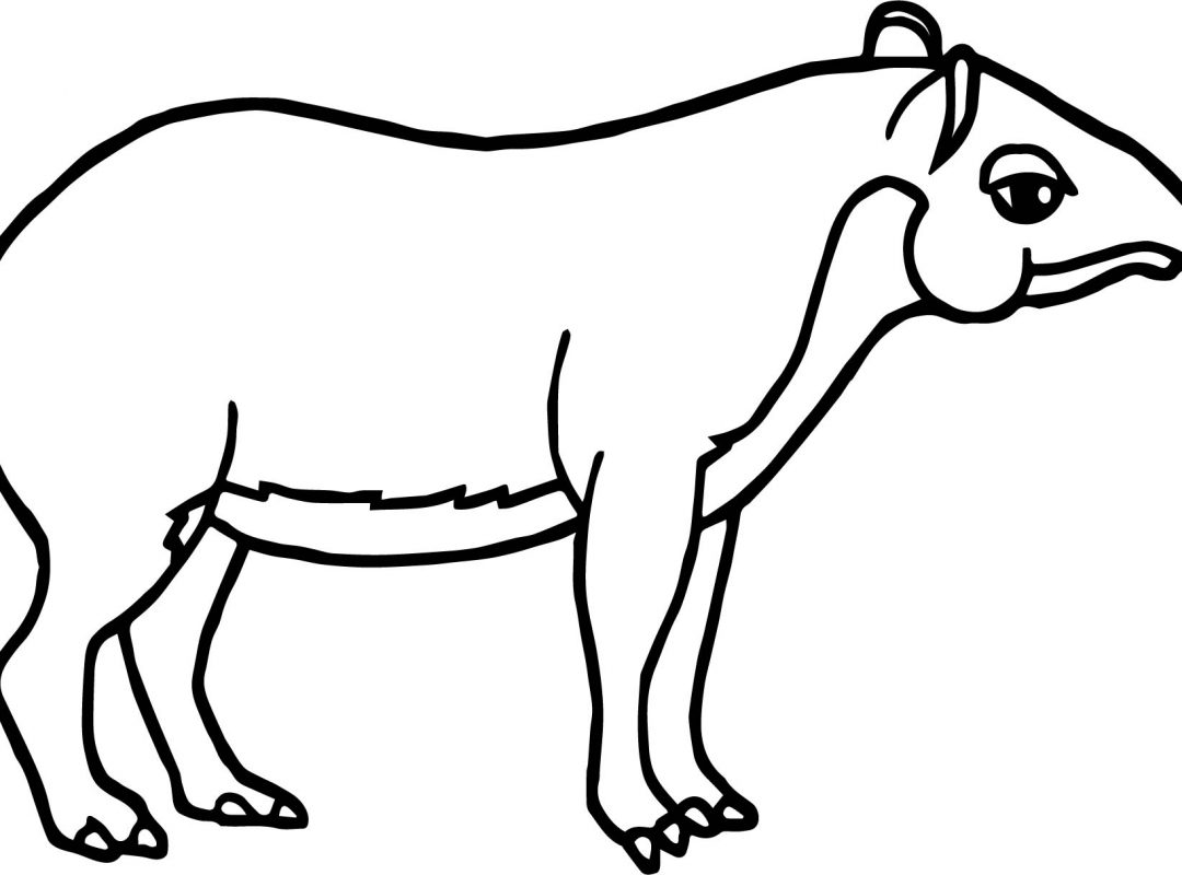 Horse Head Drawing Easy