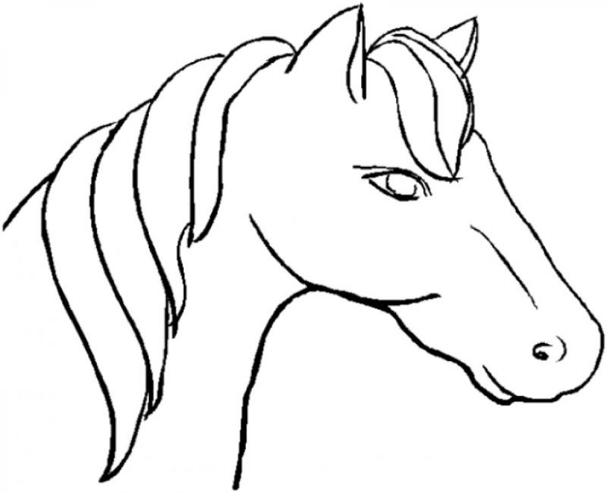 Horse Head Images Drawing Free Download On Clipartmag