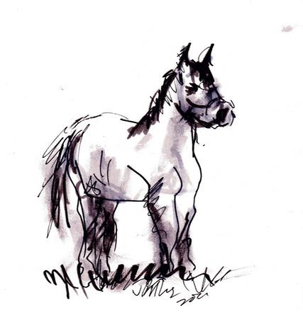 427x441 alert horse david abse