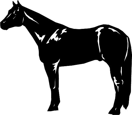 503x438 Free Horse Clipart Clip Art Pictures Graphics Illustrations Image